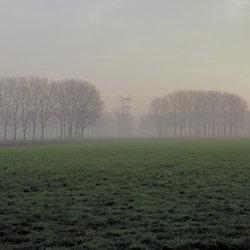 mist in de polder in de verte