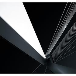 Lines [II]