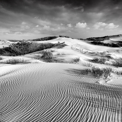 White Sands and Dark Clouds