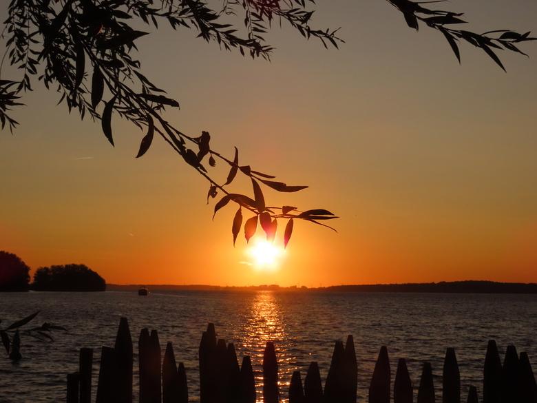 Zonsopkomst Gooimeer -  Vanaf strandje in het Naarderbos is de zonsopkomst mooi te zien.