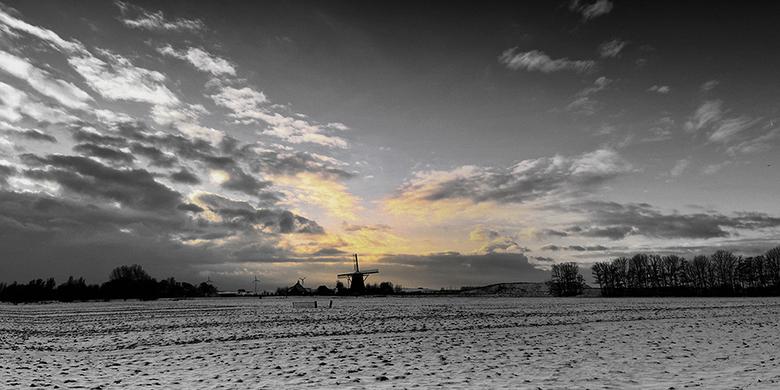 Besneeuwd polderpanorama - Een panorama van 4 foto's in portretstand, omgezet naar zwart/wit waarin alleen het gouden licht van de ondergaande zo