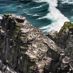 Ierland-Cliffs off Moher