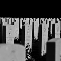 Militair begraafplaats Oosterbeek