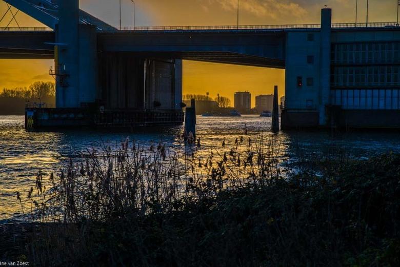 De Maas met het zicht op Rotterdam - Het begin van De Brienenoordbrug, Zicht vanaf De Schaardijk Kralingse veer