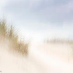 De duinen 3
