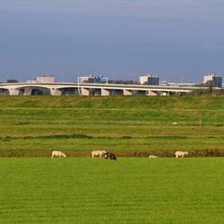 Skyline Velp. Brug A12 over de IJssel