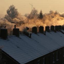 Mist, zon en kou in de ochtend
