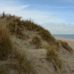 De Banjaard strand