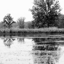 2018-10-19_Opdracht landschap_0003