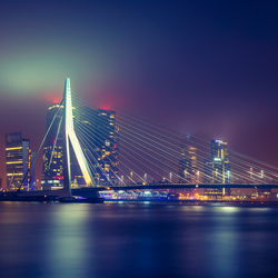 Bright Lights, Big City VI