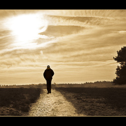 De eenzame wandelaar..