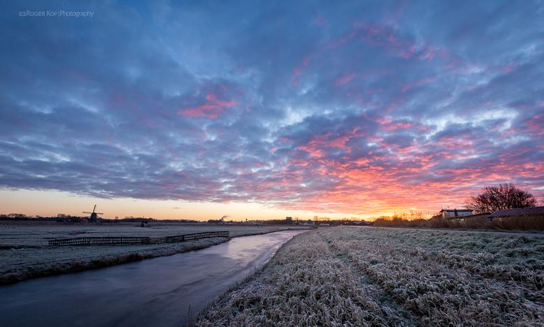 Perfecte ochtend! 1 van 3 - Afgelopen week vroeg in de ochtend mooie foto kunnen maken op de Jisperdijk bij Neck.