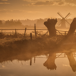 Dutch Dawn II