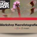 Workshop Macrofotografie - Botanische Tuinen Utrecht