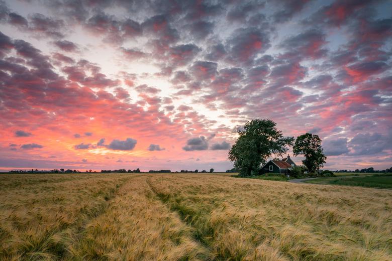Friesland verlicht - Zondagavond er nog even uit voor een foto want de voorspellingen leken wel mooi. Het beleef grijs... Totdat het net na zonsonderg