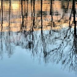 Reflecties 3