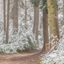 Oostereng-sneeuw 3