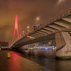 Orange Day Rotterdam