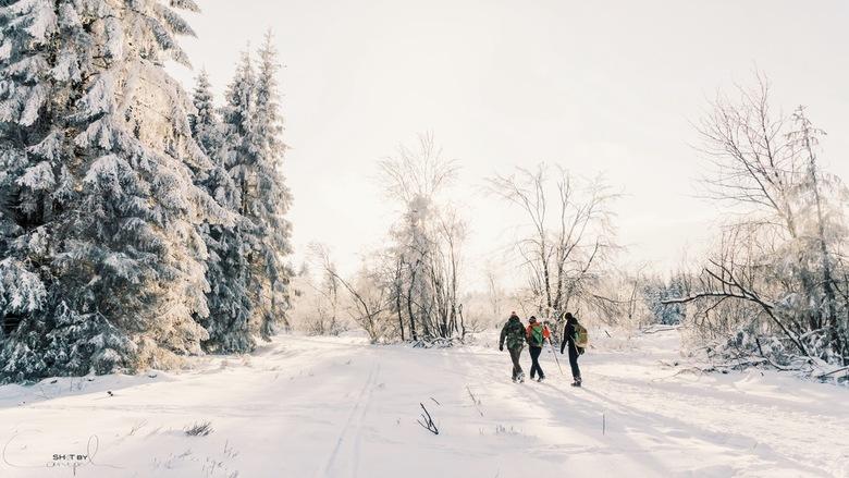Winterwandeling. - Gouden uur in de Ardennen tijdens onze jaarlijkse winterwandeling. Prachtige combinatie van sneeuw met een gouden gloed van de zons