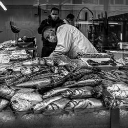 Fresh Fish ...