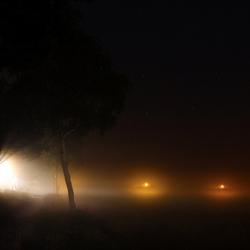 Mist in de Nacht