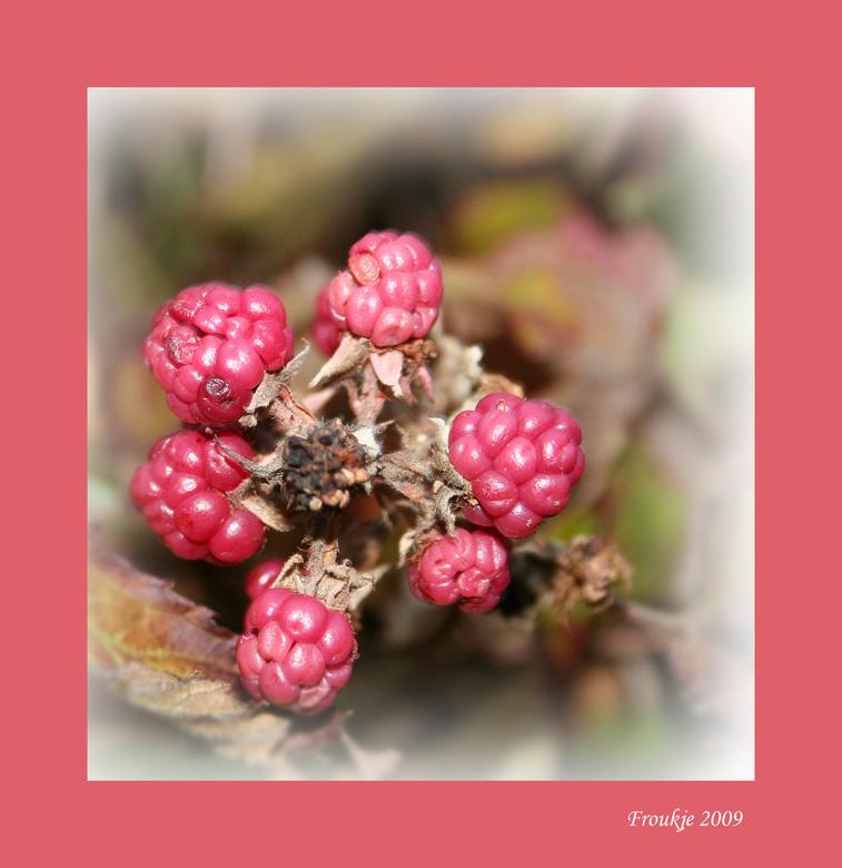 Pink Ribbon - Op de valreep nog een bijdrage .<br /> Groetjes Froukje