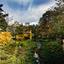 Herfst in het Westerpark