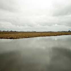 Waterlandschap