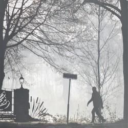 wandelaar in de mist