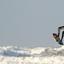 De surfer
