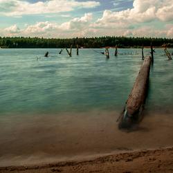 Prikkers in het water