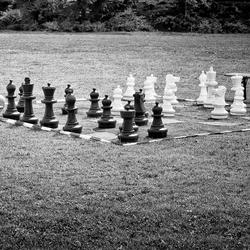 De schaker