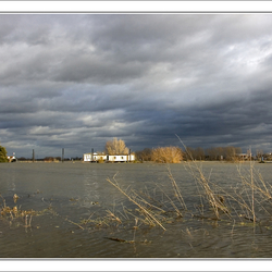 Hoog water Roermond