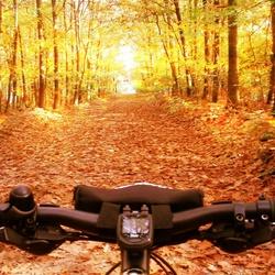 Mountain bike herfst ritje