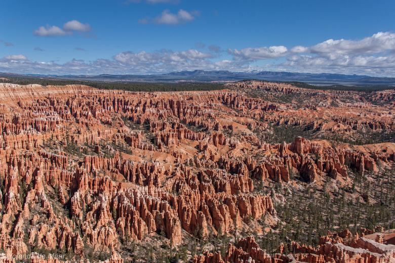 Bryce Canyon National Park  - Bryce Canyon NP is één van de mooiste canyons van Amerika door zijn unieke geologische rotsformaties. <br /> Door erosi