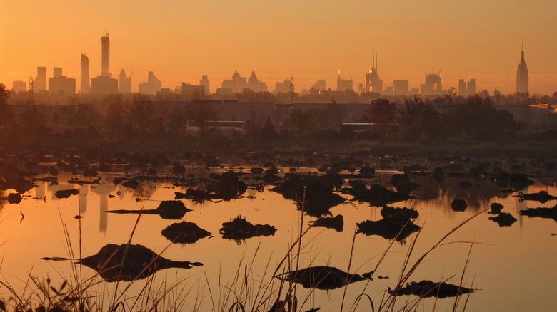 Manhattan View - Een ochtendtraining via Mill Creek Trail. Een mooie hardlooproute met uitzicht op de skyline van Manhattan. Hoe geweldig kan je ochte