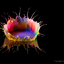 Waterdruppel Kleurrijk 2