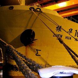 Zhen Hua 10