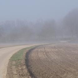 stilte in de mist