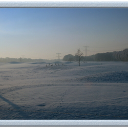 Winter 2009 Snow on the Tee