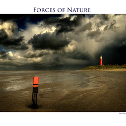 Forces of Nature 7