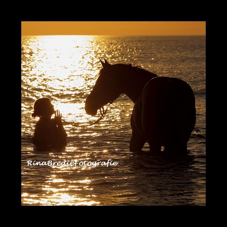 Zomerhitte - Vanavond aan het strand van Hargen aan Zee trof ik een paar ruiters met paarden, die na een duinrit lekker verkoeling zochten in het zeew