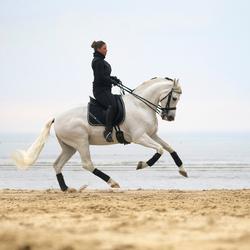 Paard strand actie