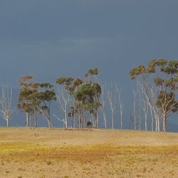 Landschap Zuid Afrika