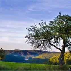 Sfeer van de Eifel (D)