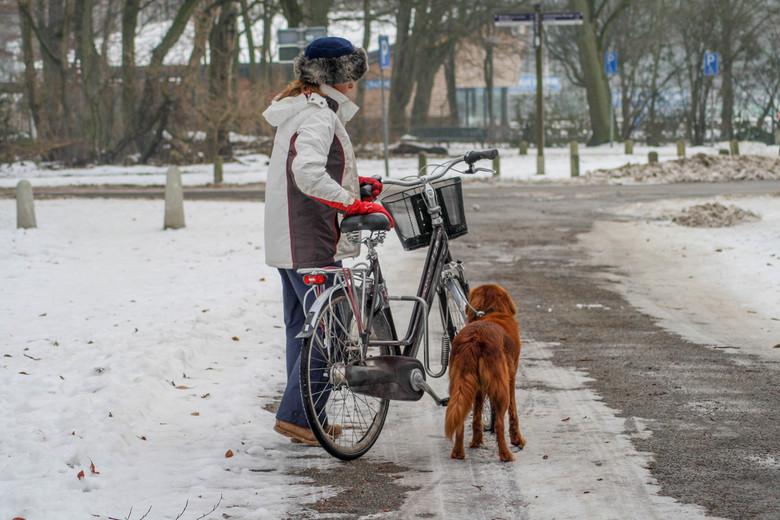 """Vorige winter: Fietsen in de sneeuw - <img  src=""""/images/smileys/smile.png""""/>"""