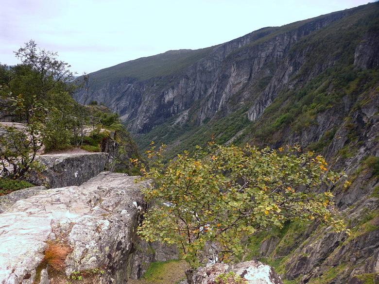 Ongerepte natuur. - Ongerepte natuur bij Mabodalen Ravijn Noorwegen.<br /> 29 augustus 2013.<br /> Groetjes Bob.