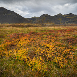 Icelandic Plains