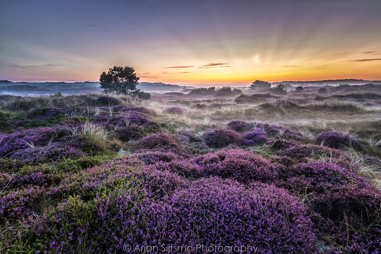 Een sprookjesachtig landschap