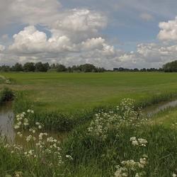 Landschap De Wieden